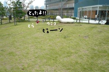 f0170072_22414573.jpg
