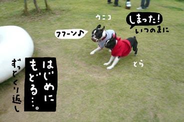 f0170072_2242190.jpg