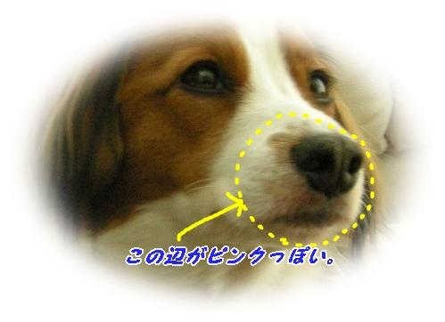 d0001985_14153012.jpg