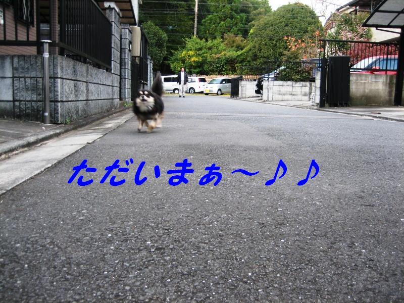 b0150088_20503447.jpg