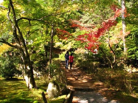 紅葉を訪ねて-神護寺2大師堂_e0048413_2374781.jpg