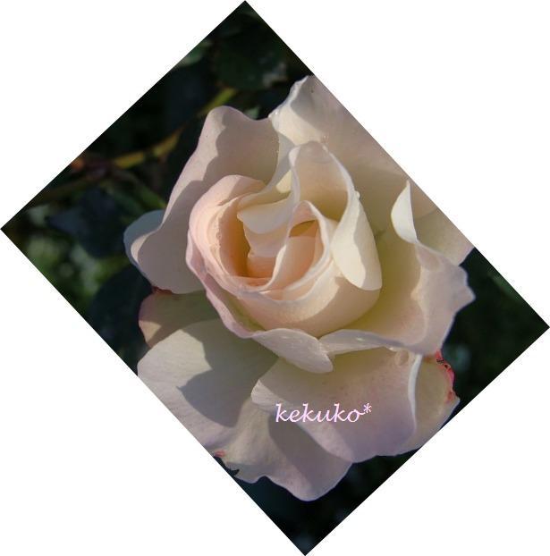 f0170524_17305360.jpg