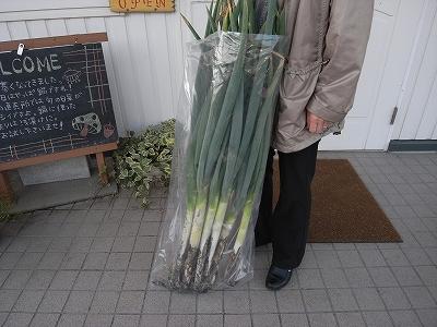 11月6日、温泉「シャトレーゼカントリー倶楽部札幌」_f0138096_23145943.jpg
