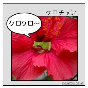 c0076204_14362811.jpg