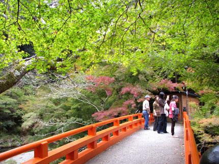 紅葉を訪ねて-西明寺_e0048413_1757413.jpg