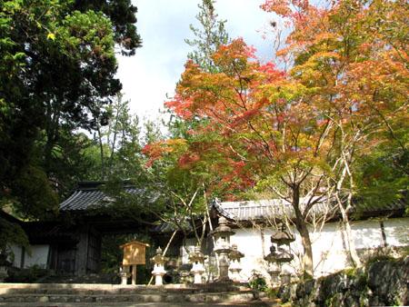 紅葉を訪ねて-西明寺_e0048413_1758112.jpg