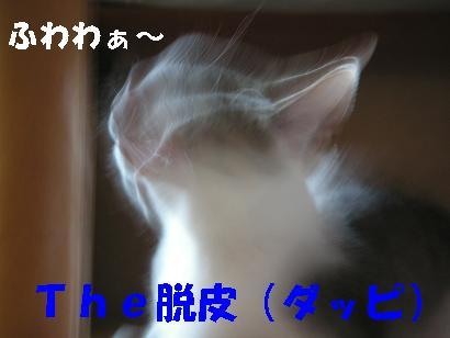 c0179136_23504151.jpg