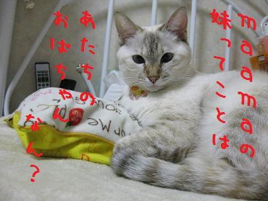 b0151748_1242555.jpg