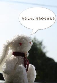 b0114723_1811777.jpg