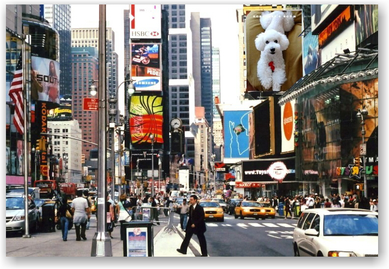 Times Square_d0083623_22272620.jpg