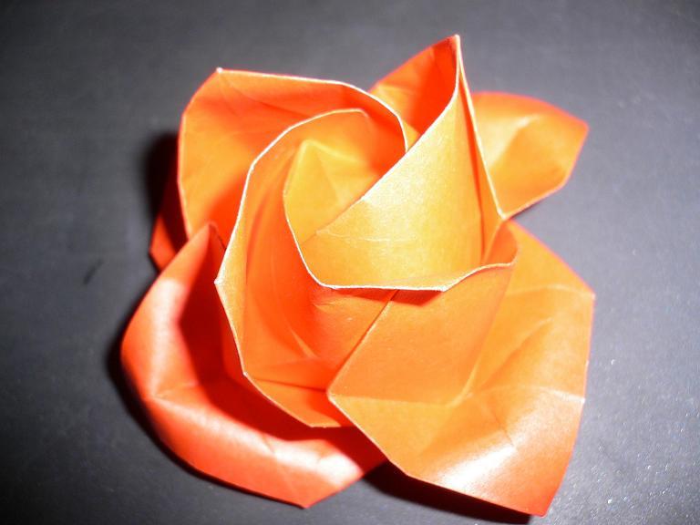 すべての折り紙 折り紙 バラ 作り方 平面 : ... 折り紙隊員編~ : 子猫的BOLIVIA