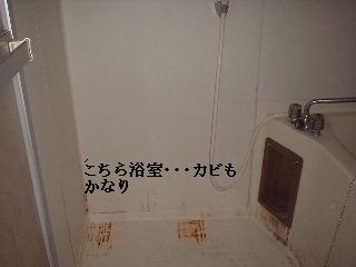f0031037_1932335.jpg