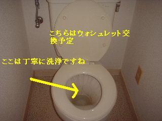 f0031037_19334972.jpg