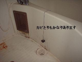 f0031037_19341572.jpg