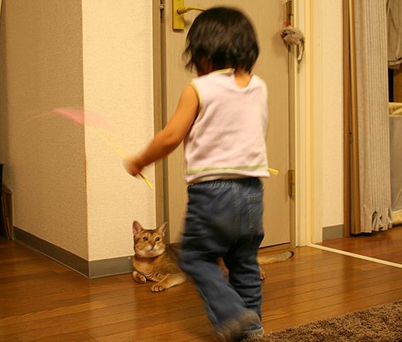 プチ猫じゃらマスター_a0009397_23114780.jpg