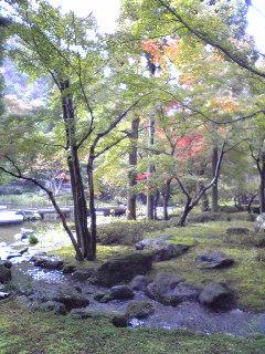 秋の京都_d0085018_14545630.jpg