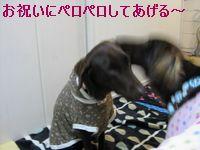 b0148945_017768.jpg