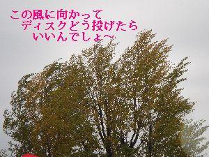 b0101991_21335997.jpg