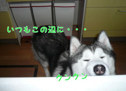 f0112407_22461988.jpg