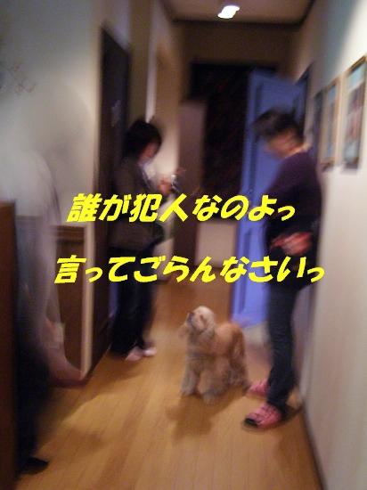b0067012_2137344.jpg