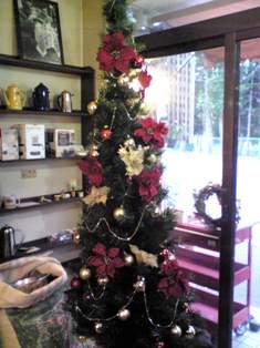 ★ニコニコクリスマス2008★_b0136223_14221353.jpg