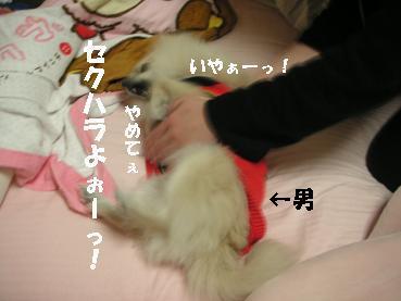 c0179136_22515324.jpg