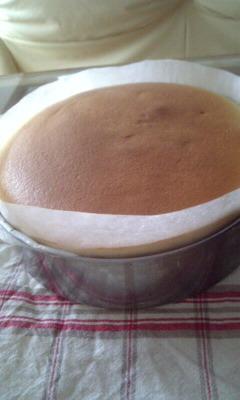 風邪とチーズケーキ_c0176271_1522488.jpg