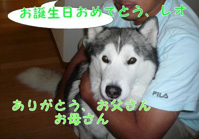 f0112407_0363892.jpg