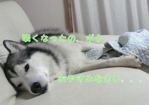 f0112407_0391379.jpg