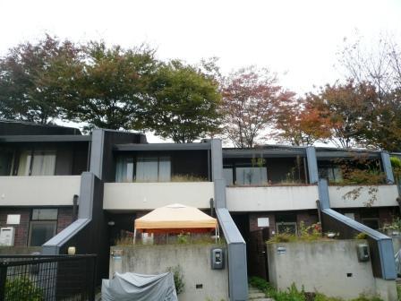 大阪へ行ってきました。_e0149215_12503997.jpg
