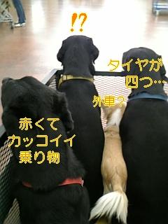 f0148927_201115.jpg