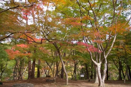 月の石もみじ公園 (上長瀞)_e0062530_1805047.jpg
