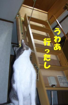寒いっ_f0002743_1447434.jpg