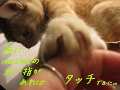 b0151748_12545088.jpg