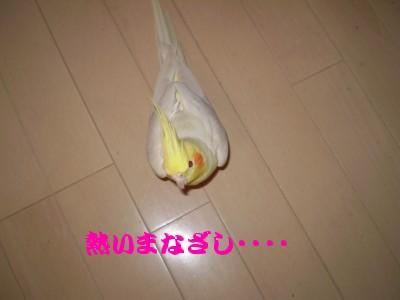 f0172650_22595114.jpg