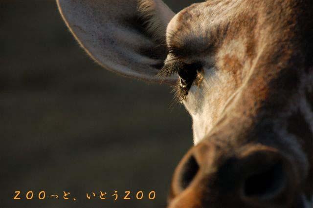b0153451_20101032.jpg