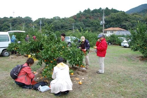 2008年11月度「大人の林間学校」_c0108460_20481943.jpg