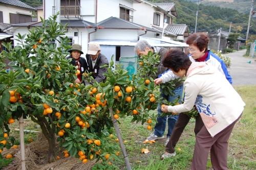 2008年11月度「大人の林間学校」_c0108460_2049259.jpg