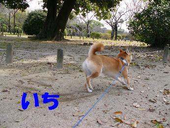 b0150665_2010316.jpg