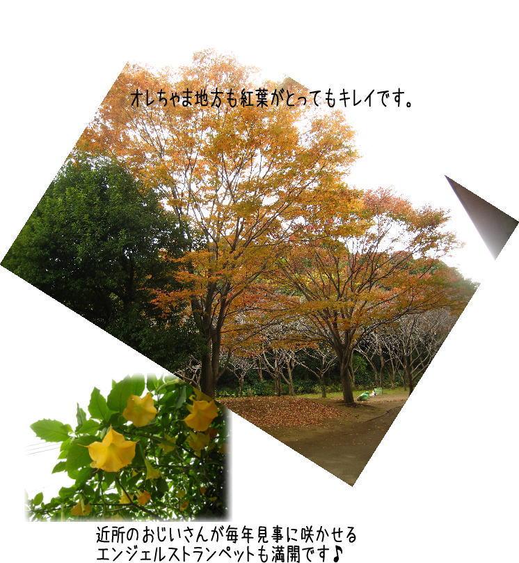 f0187974_22394666.jpg