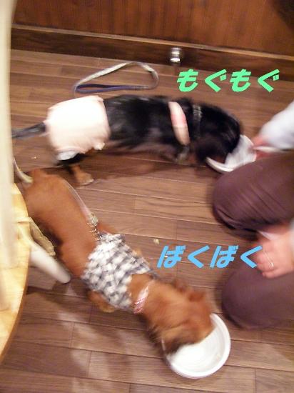 b0067012_2254462.jpg