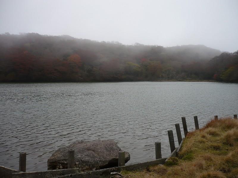 f0182513_1951596.jpg