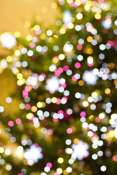 もうクリスマスかぁ・・・・_c0162926_11265154.jpg