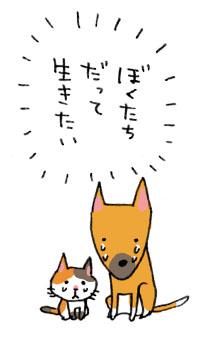 b0043728_0521946.jpg
