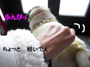 c0139488_15184987.jpg