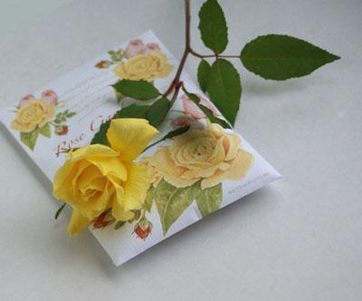 バラの香り_d0107929_22574986.jpg