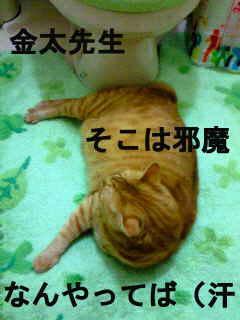 f0192630_16463674.jpg