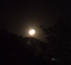 満月です〜_e0041337_18454894.jpg