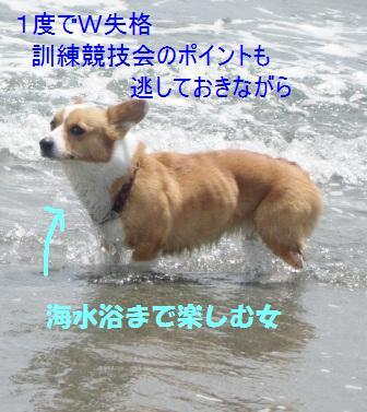 d0081541_223881.jpg