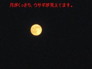 b0148945_18413759.jpg